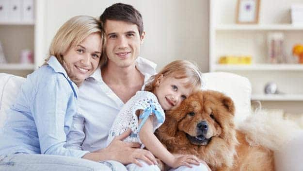 Wills & Trusts dog-young-family Direct Wills March